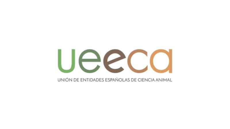 UEECA Scholarship Winners to Porto 2020