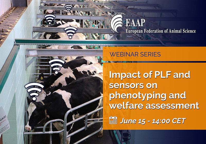 Impact of PLF and sensor on phenotyping and welfare assessment